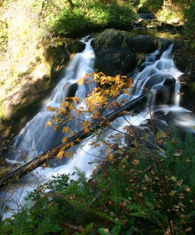 Beaver Creek in Autumn